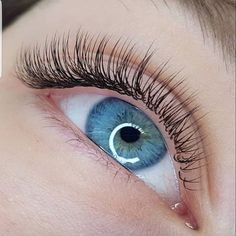 One-by-One wimperextensions